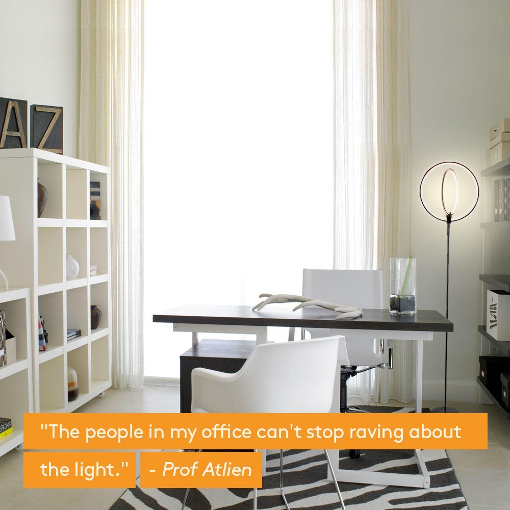 Brightech Eclipse LED Floor Lamp - Double Rings of Light ...