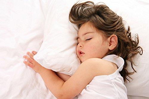 Dreamtown Kids Toddler Pillow With Pillowcase, White