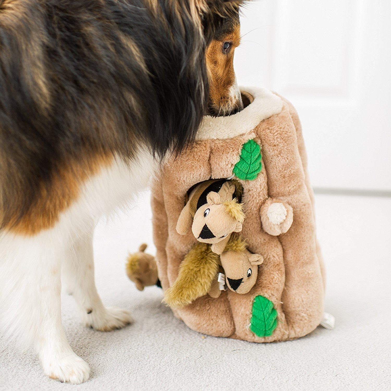 Toys For Dogs : Hide a squirrel plush squeaking toys for dogs best offer