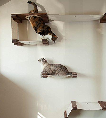 Multiple Level Cat Hammock Amp Climbing Activity Center Best