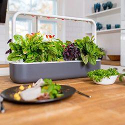 homehome garden and tools smart garden 9 indoor gardening kit - Indoor Garden Kit