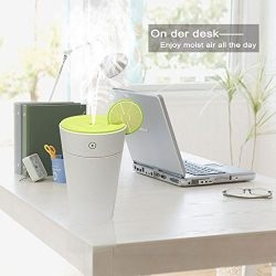 USB Mini MistAire Ultrasonic Cool Mist Humidifier