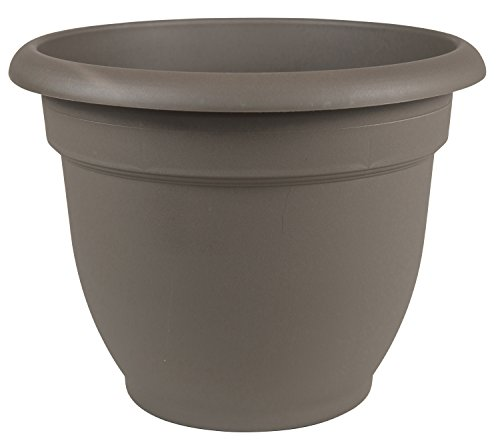 "Bloem Ariana Self Watering Planter, 6"", Peppercorn"
