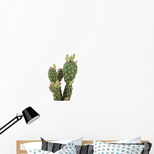 Wallmonkeys Cactus Plant Wall Decal Peel and Stick Floral Graphic