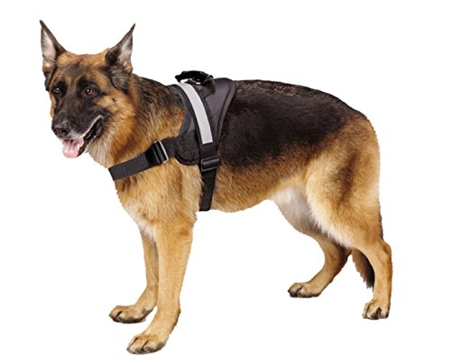 EXPAWLORER Big Dog Harness - Soft Reflective No Pull Black Size L 26-36 inch.