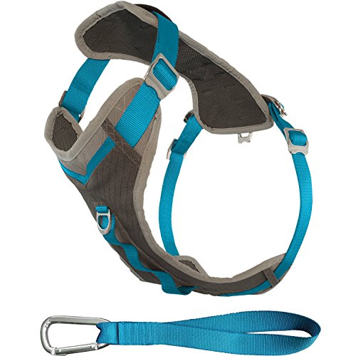 Kurgo Journey(TM) Dog Running Harness, Dog Walking Harness, Dog Hiking Harness, Dog Harness Large, Blue