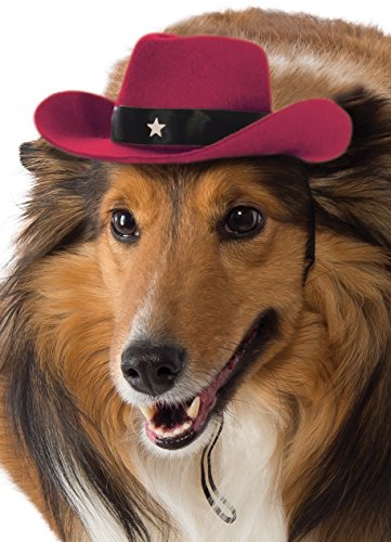Rubie's Red Cowboy Hat for Dogs