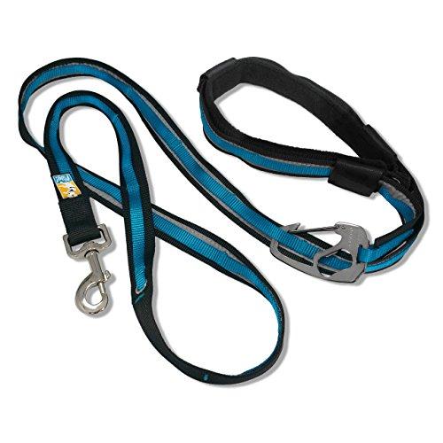 Kurgo 6-in-1 Quantum (TM) Hands Free Dog Leash for Walking, Running or Hiking & Reflective Dog Leash with Adjustable Waist Belt, Coastal Blue