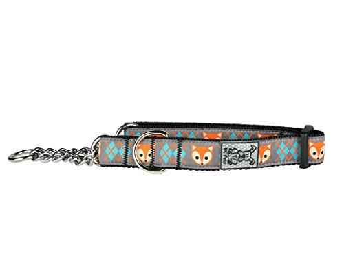 "RC Pet Products 3/4"" Training Martingale Dog Collar, Medium, Fox"