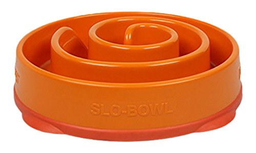 Slow Feeder Dog Bowl Fun Feeder Stop Bloat Bowl for Dogs