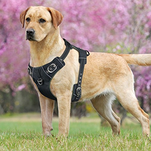 Front Range No-Pull Dog Harness with Handle Adjustable Reflective Pet Harness Vest