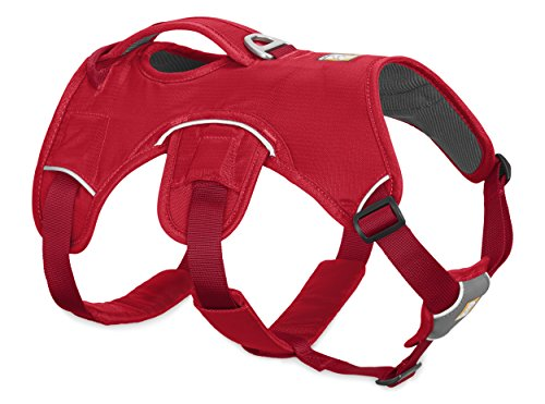 Ruffwear Web Master Dog Harness with Lift Handle