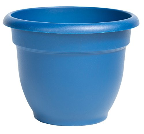 "Bloem Ariana Self Watering Planter, 6"", Deep Sea"