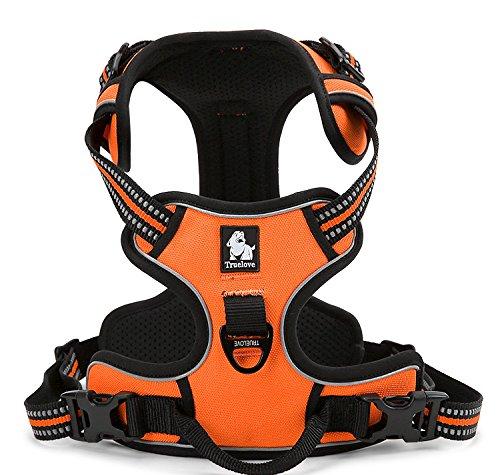 Best Front Range No-Pull Dog Harness