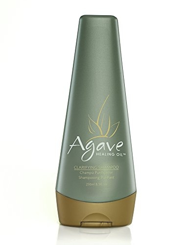 Agave Healing Oil - Clarifying Shampoo. Daily Moisturizing Shampoo that Gently Removes Styling Build Up, Debris, and Dirt. Sulfate Free, Paraben Free, Phthalate Free and Cruelty Free (8.5 fl.oz)