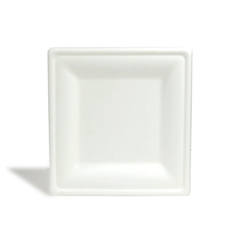 Repurpose 100% Compostable, Tree Free, Plant-Based Plates, Square, 10 inch (125 Count)