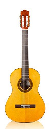 Cordoba Guitars Protege C1 ¾ Size Acoustic Nylon String Guitar