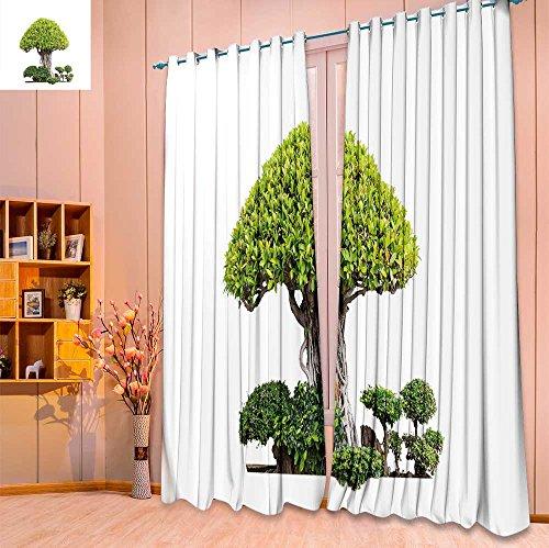 Room Darkening Window Curtains,Bonsai Trees