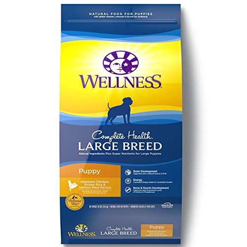 Wellness Complete Health Natural Dry Large Breed Puppy Food