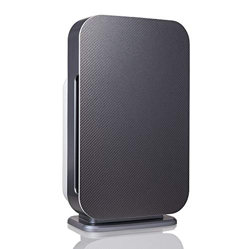 Alen BreatheSmart 45i HEPA Air Purifier for Rooms, 800 SqFt. Coverage Area, with Multi-Purpose HEPA Filter for Mold, Bacteria, Odors, Allergies, Dust, Dander, and Fur in Graphite