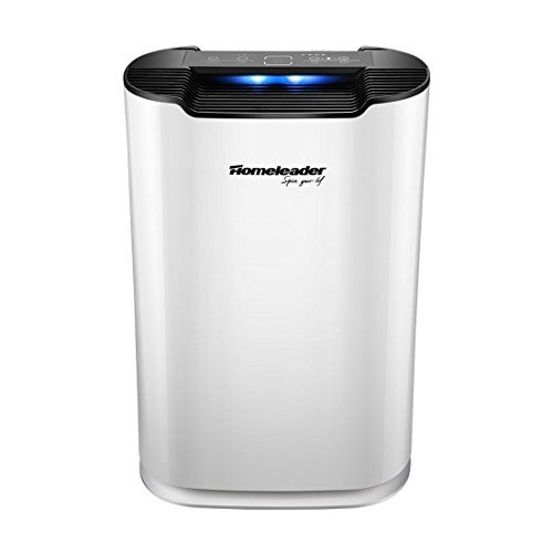 Homeleader Air Purifier with True HEPA Filter, Air Cleaner for Large Room