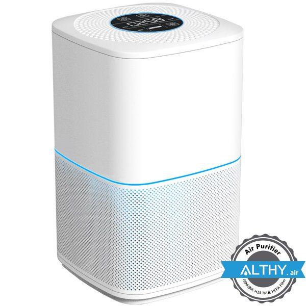 Air Purifier for Home Allergies Pets Hair Smokers